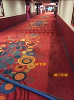 Photos Sunshine Carpet Cleaning